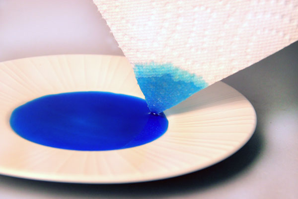Paper towel, food coloring, carpet fibers, and capillary action